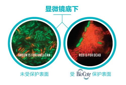 抗菌管再升级!卫水宝推出全新PP-R BioCote®抗微生物保健管道